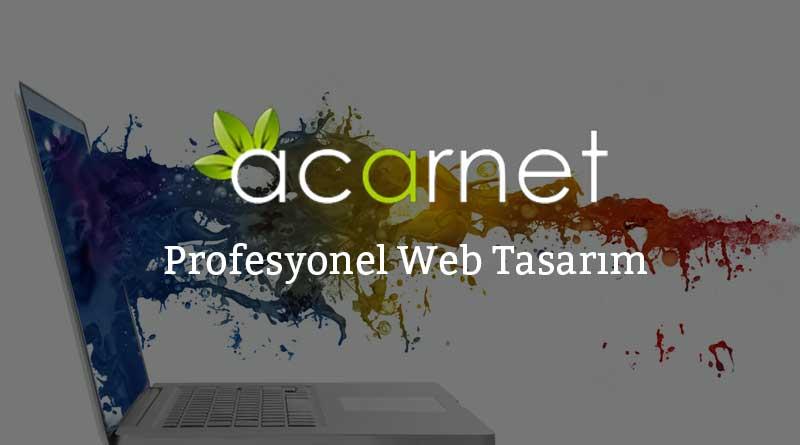 Profesyonel-Web-Tasarım