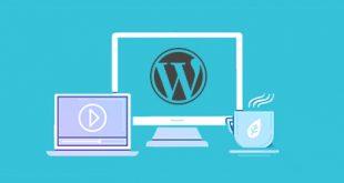 Wordpress Tabanlı Site Kullananlar İçin Temalar